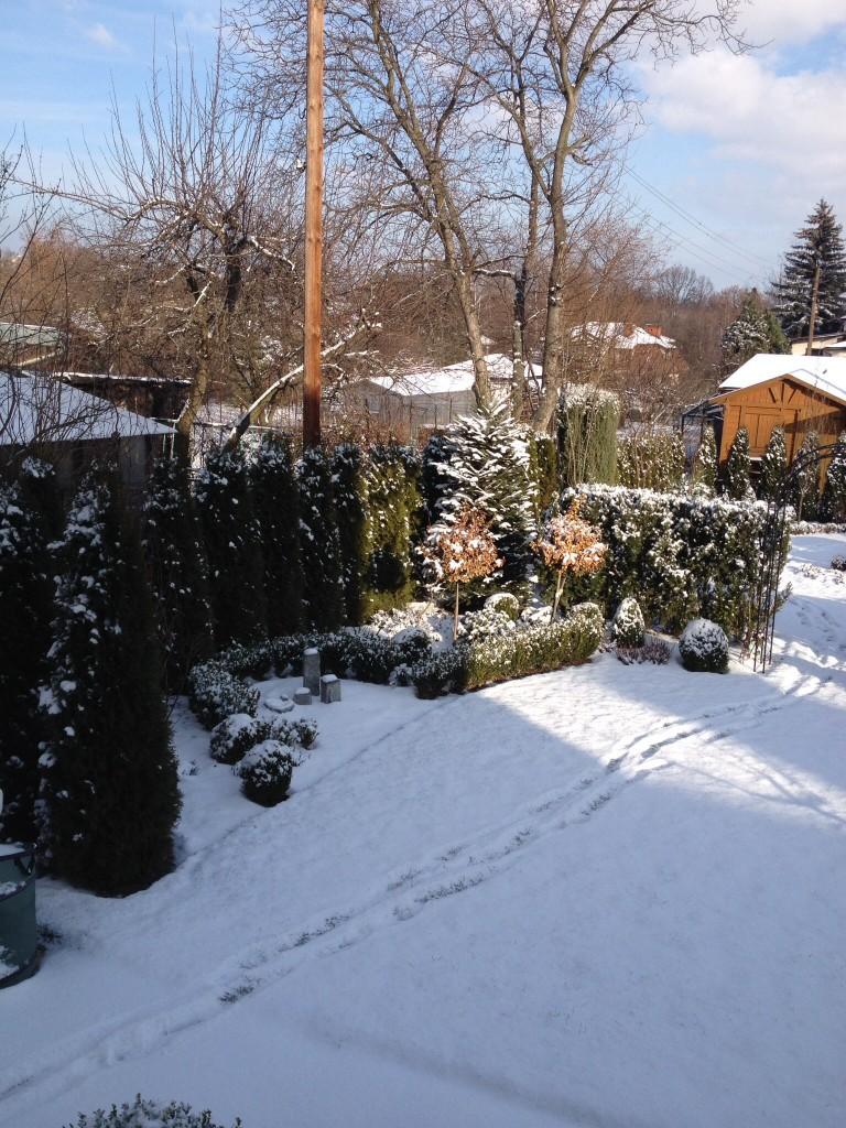 Ogród, Zimowe widoki