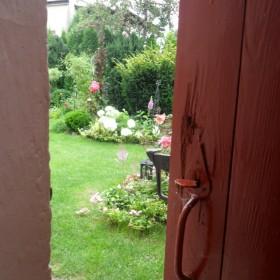 latem w ogrodzie moim...zapraszam:)
