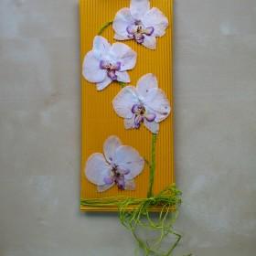 Jak wykorzystać ususzone kwiaty storczyka ...