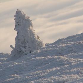 Sylwester na Śnieżniku (galeria tymczasowa) - Sudety