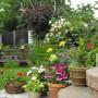 TOP100 Najpiękniejsze ogrody