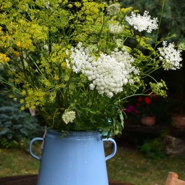 ...kocham ten czas, kiedy kwitną zioła...