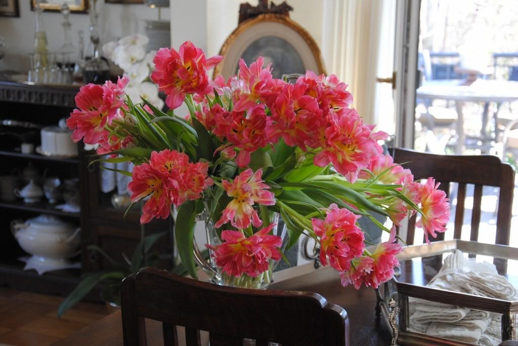 Pozostałe, Kwietniowe lato :) - ...a tulipany ukwiecają dom ...w promieniach słonka wyglądają świetnie i wywołują uśmiech na mojej buzi :)