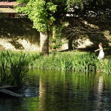 """Kawa w ogrodzie w piękny słoneczny dzień to bez wątpliwości przyjemność...Kawa w pałacowym ogrodzie """"u św.Jacka """"w Kamieniu Śląskim to mega przyjemność...W Gogolinie znalazłam filiżankę...chętnie przy takiej posiedziałabym w moim ogródku :)"""