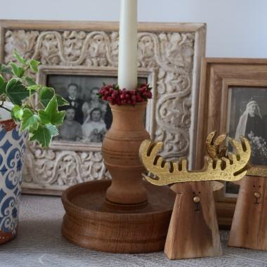 Starociowo-dekoracyjne pstryki domowe