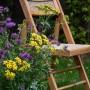 Ogród, ...kocham ten czas, kiedy kwitną zioła...