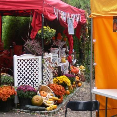 Dziasiaj 9 października odbył się OSMY DOLNOŚLĄSKI FESTIWAL DYNII  w ogrodzie botanicznym Uniwestytetu Wrocławskiego, i my(Wilijki) tam byliśmy z naszymi skromnymi zbiorami i pomimo fatalnej pogody.Relacje z dotychczasowych imprez na stronie http://www.biol.uni.wroc.pl/obuwr/
