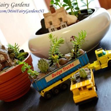Mini ogrody/Mini Fairy Gardens