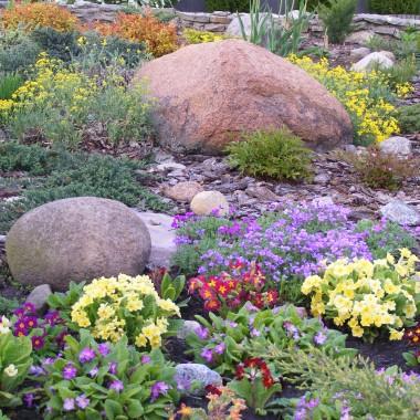 Mój ogród o różnych porach roku