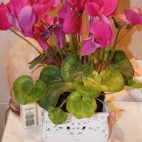 Kwiatki Kwiatki Kwiatki