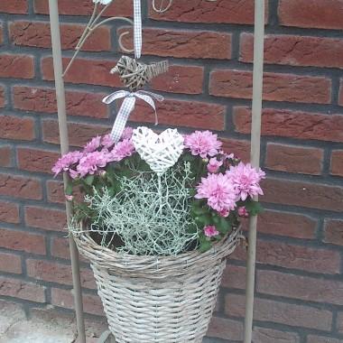 Ogród kwitnie
