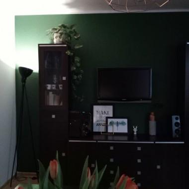 witam galeria powstała już ok miesiąc temu:) cały czas czekamy na sofę będzie za ok 3 tygodnie, myślę ,że będzie to kropeczka nad  i:)Obrazy na ścianie dodały niesamowitego klimatu, w połączeniu z zieloną ścianą wyglądają naprawdę super ( wszystko dzięki Waszym sugestiom )  pozdrawiam serdecznie