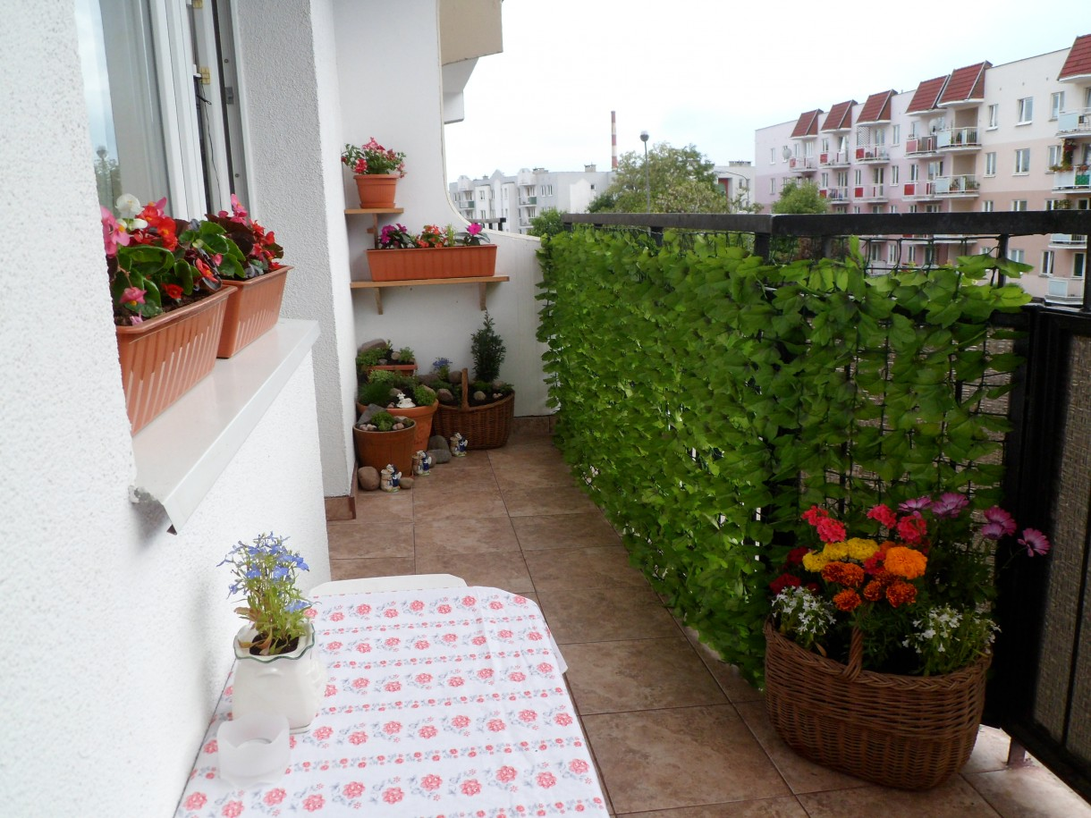 """Balkon, Mój wymarzony """"prawie"""" ogród :)"""