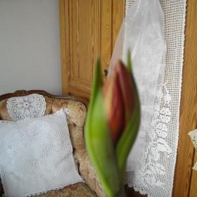 Kwiatuszkowo.........................
