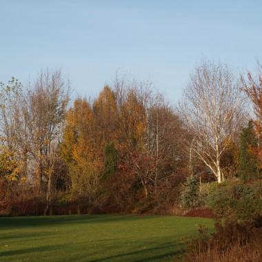 Ruda jesień w Ogrodach