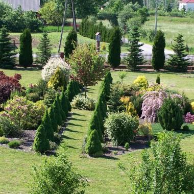 salon, ogród