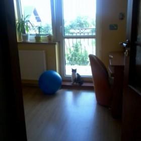 Zmiany w moim pokoju ...proszę o propozycje :)