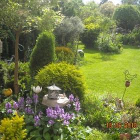 wędrówka po letnim ogrodzie