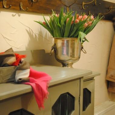 Od progu witam więc gości kwiatami ...na ganku szafirki ,w korytarzu na dzień dobry tulipany :)