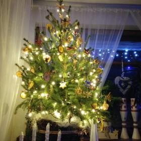 W świątecznym nastroju ...