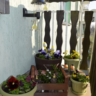 mój maleńki ogródeczek