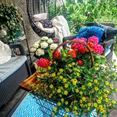 Kocham kwiaty i ładne przedmioty