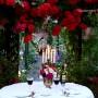 """Ogród, Róże w """"Zaczarowanym Ogrodzie Magnolii"""""""