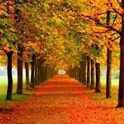 Pierwszy dzień jesieni...