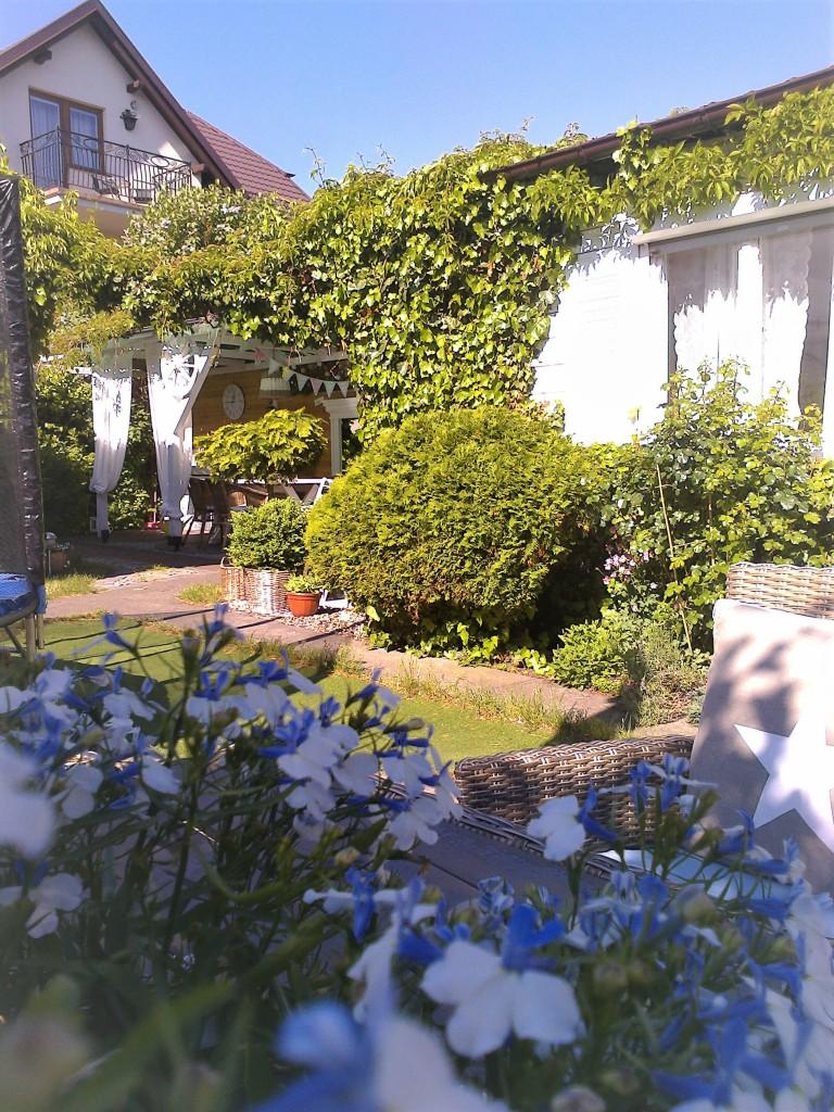 Pozostałe, Ogródek z altanką