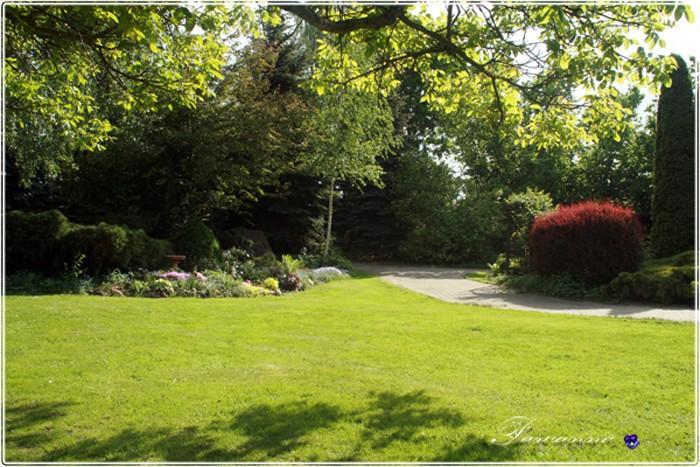 Pozostałe, Ogród o zachodzie słońca - skalniak przed domem