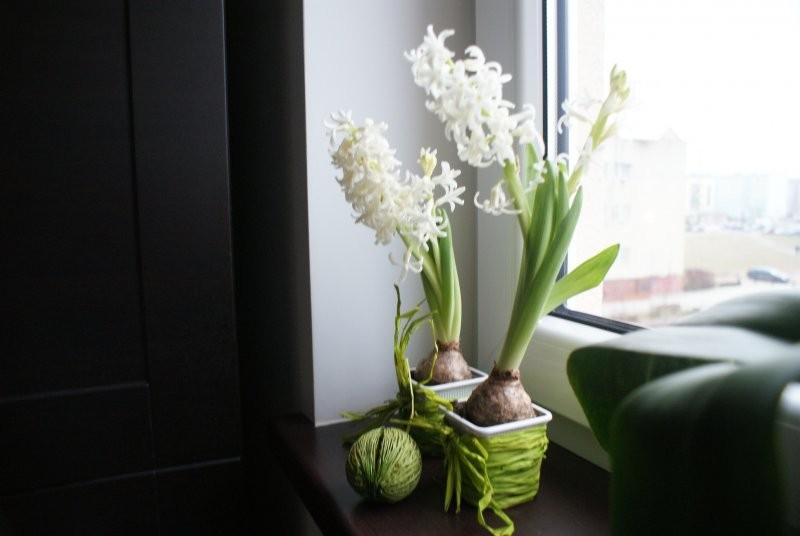 Salon, Złamane zielenią, czasem fioletem...