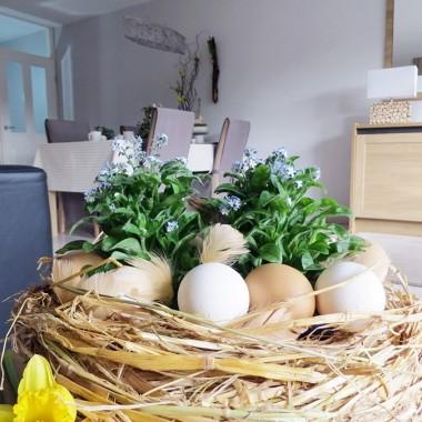 Najwyższy już czas u mnie na świąteczne dekoracje :)Zapraszam więc,na dawke wiosennych barw,kwiatów i zapachów do mojego salonu.Tym razem na stole,cała gromada bratków ,wianek ze słomy i niezapominajek,rzeżucha,tulipany i hiacynty..... caly wystrój w spokojnych naturalnych barwach .A dekoracje i aranżacje jak zawsze bardzo proste z dodatkiem swieżych kwiatów,tak jak lubie :)Zapraszam do galerii.