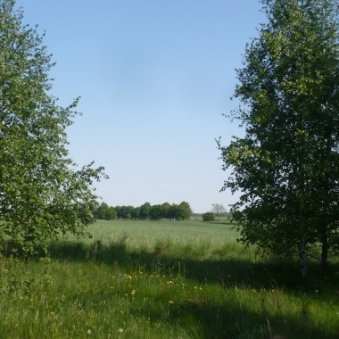 .................i wiejskie klimaty..............