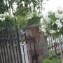 Pozostałe, Dekoracje ślubne - Dekoracja kościoła w Bliżynie, pod Skarżyskiem