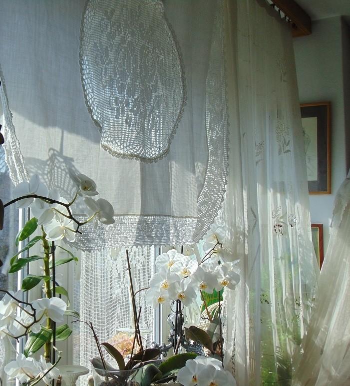 Pozostałe, Moje kwietniowe fotki............... - ...........i storczyki na oknie............