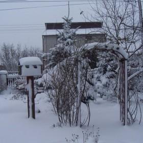 Zima w ogrodzie i w lesie