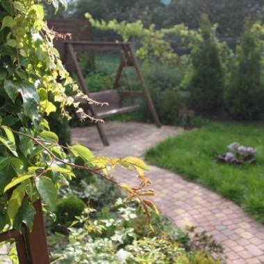 Maly przydomowy ogrodek,jeszcze niezupełnie skończony.