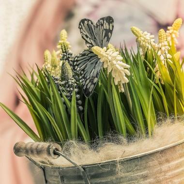 """""""....zapachniało zajaśniało,wiosna ach to ty"""""""