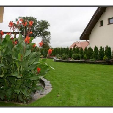 Ogród młodziutki, ale już cieszy oko:)