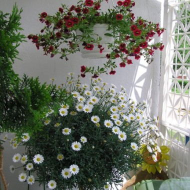 Balkon - nowa aranżacja