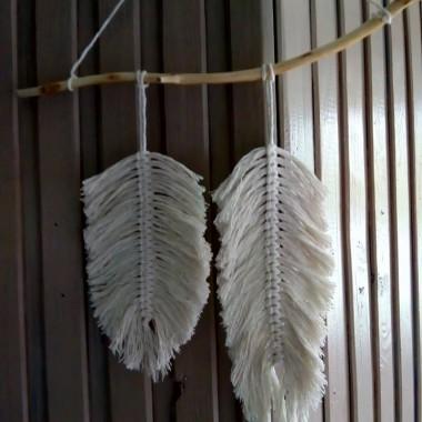 pióra i ptaszki