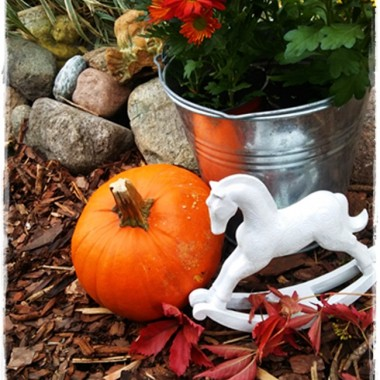 Jesień w moim ogrodzie / tarasie.