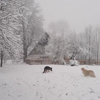 U nas już zima :-)