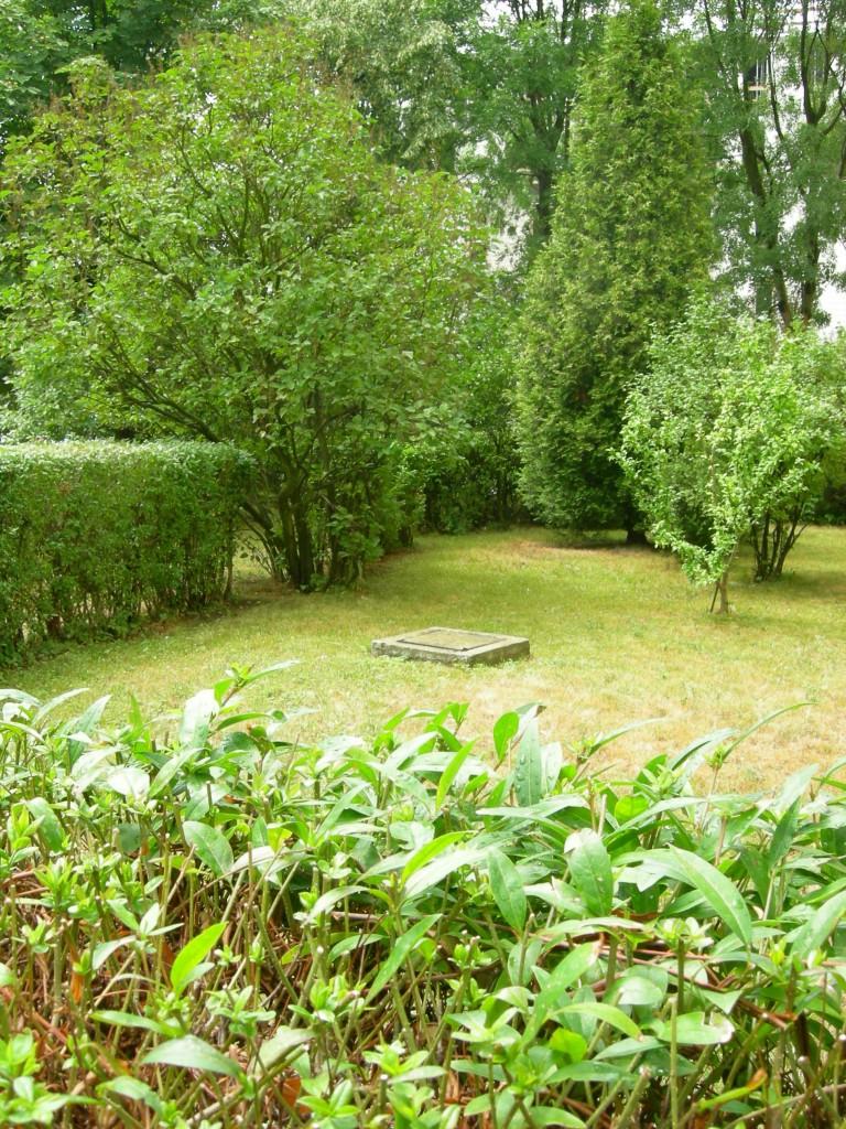 Balkon, Balkon i mała rabata - na całym terenie uschnięta trawa