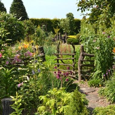 Ogród w kolorach lata...