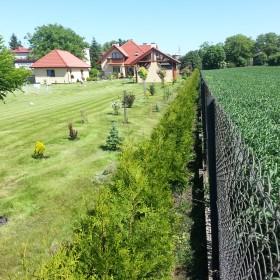 stworzyć piękny ogród