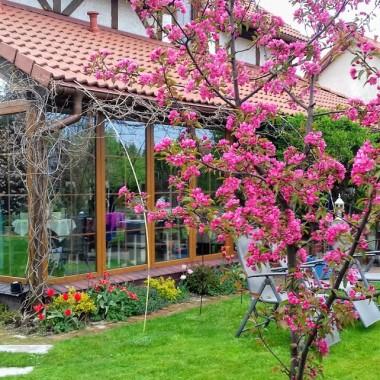 Wyjątkowy dom w ogrodzie