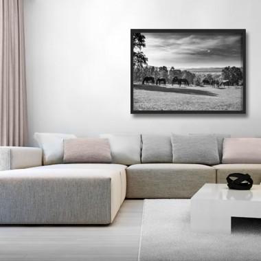 Czarno-biała fotografia w formie plakatu w ramie, doskonale ozdobi salon.