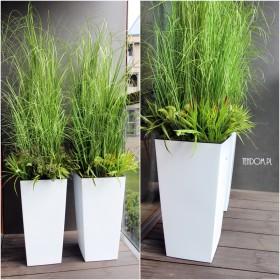 Minimalistyczne trawy