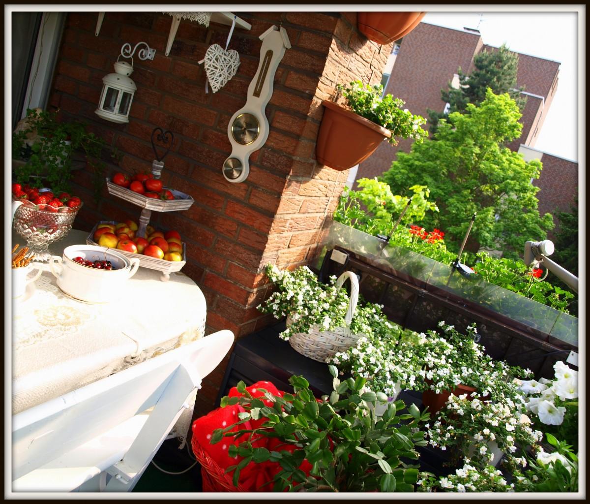 Pozostałe, Nasz jest ten kawalek balkonu:) - Balkon w otoczeniu zieleni....
